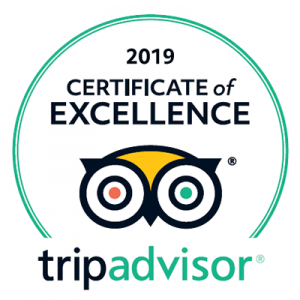 Tripadvisor Madrid and You