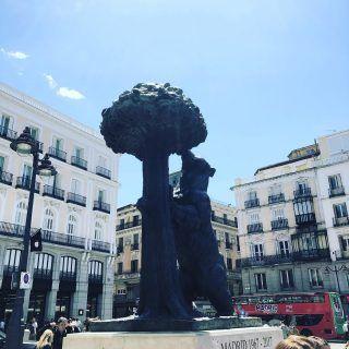 Hoy en nuestro blog te contamos toda la historia que hay detrás del símbolo del oso y el madroño. #madrid #turismo
