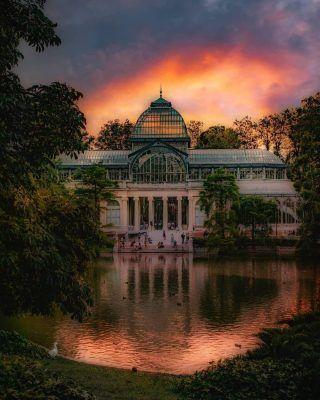 Como bien nos enseña @_.carlita._ en su increible foto😍📸 El retiro es sin duda uno de los lugares más bonitos de Madrid y seguro que ya lo has visitado por lo menos un par de veces, pero... Conoces todo lo que hay que hacer y ver allí? Te faltará alguna, asi que hoy te tramos las 8 cosas que no te puedes perder del Retiro (enlace en bio) . . . . . . . . . . . #elretiro #parquedelretiro #jardinesdelbuenretiro #retiromadrid #elretiromadrid #retirodemadrid #retiro #barcasdelretiro #palaciodecristal #paláciodecristal #madridencanta #madrid🇪🇸 #madridescultura #madridandyou #madrid #madridespaña #timeoutmadrid #quehacerenmadrid #queverenmadrid